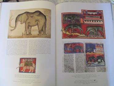 beastiary elephant