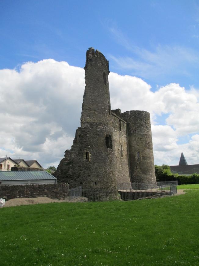 ferns castle irland